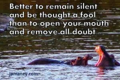 Living-jpm-remain-silent