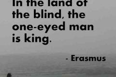 erasmus-land-of-blind
