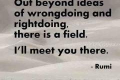 quote-Rumi-jpm-7