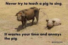 quote-teach-a-pig